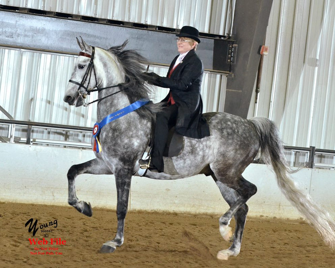 May Newsletter! - Show Your Horses!