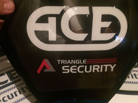Triangle & Ace - the complete security solution