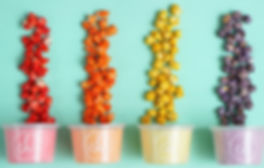 Personalize tu envase de algodon de azucar