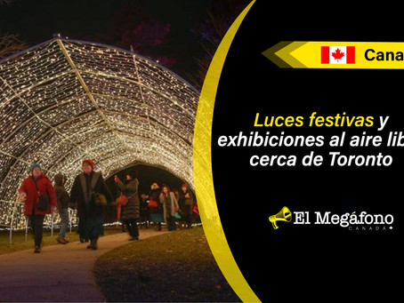 Winter Wonders: Explora estos 1,5 kilómetros de pintorescos y luminosos senderos en Hendrie Park