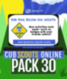 Virtual Cub Scouts.png