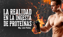 La realidad en la ingesta de proteínas