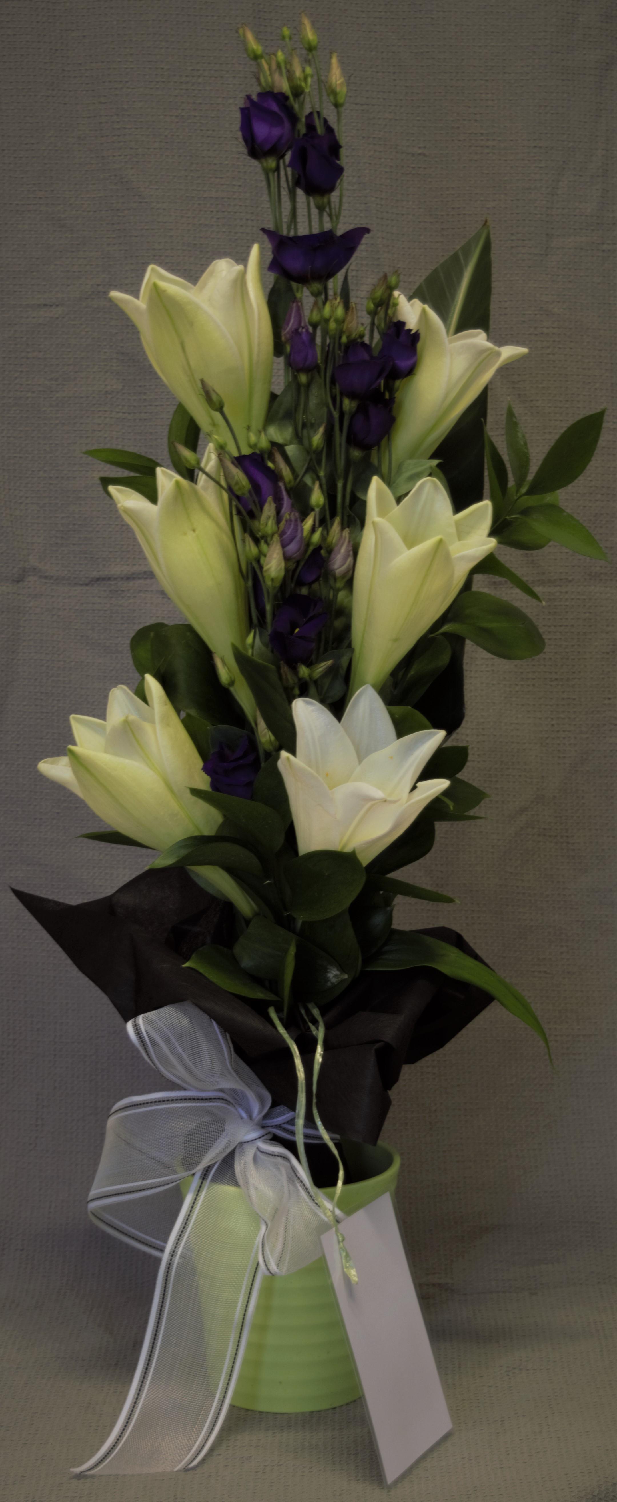 Kimppu 40e (lilja,eustoma)