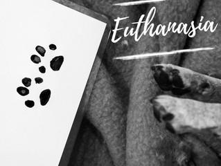 E - Euthanasia