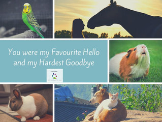 You Were My Favourite Hello