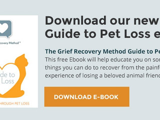 Grief Recovery E-Book