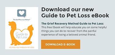 download ebook offer.jpeg