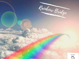 R - Rainbow Bridge