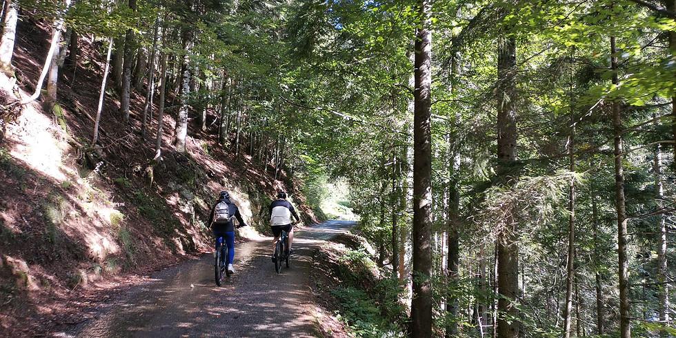 Escursione alla scoperta delle valli Stabina e di Averara in MTB, tra storia e natura