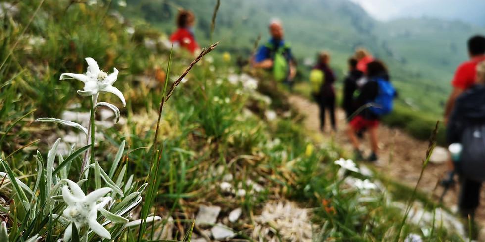 Escursione Sentiero dei fiori