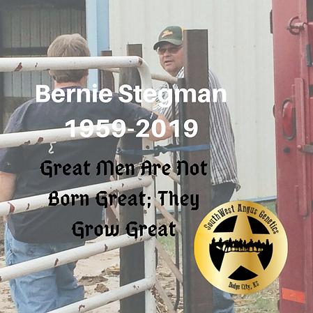 Bernie Stegman.png