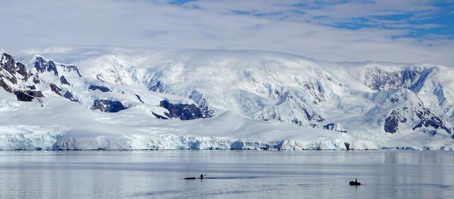 Expedição feminina à Antártida vira exposição fotográfica