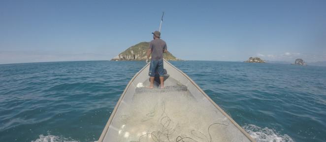 Em três anos, Olha o Peixe! aumentou a renda de 96 famílias pescadoras do litoral paranaense