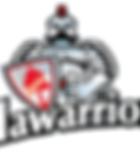 Illawarrior, Illawarra Rugby Union,Wollongong Rugby Union