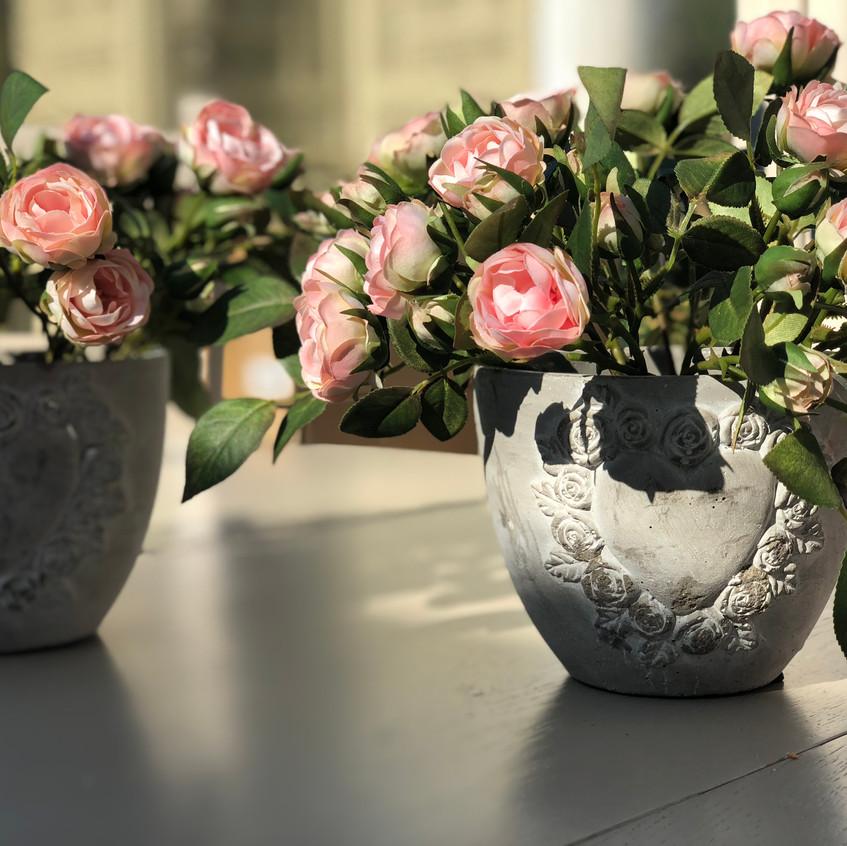 Pink spray rose grey pot