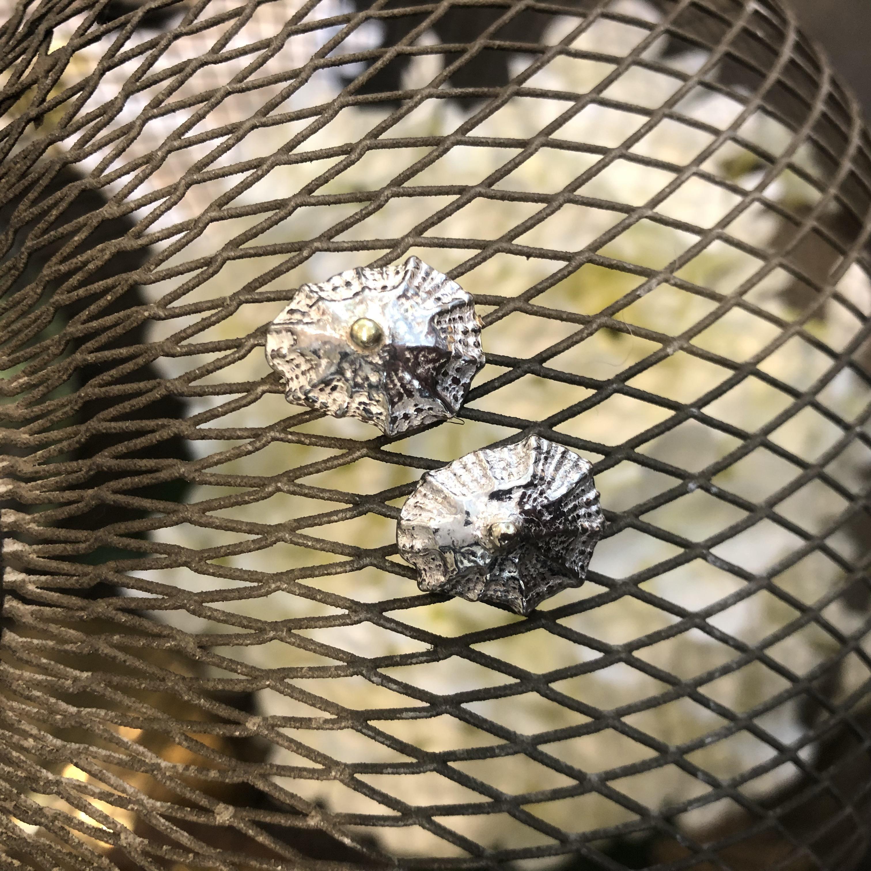 Silver & gold shell earrings