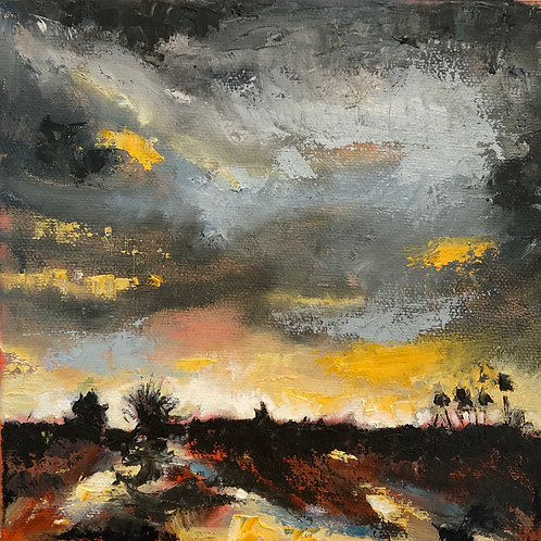 Heavy Skies By Penny Driscoll