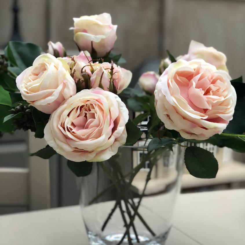 Powder Pink roses