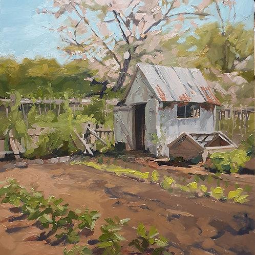 McGregors Vegetable Garden By Paula Mitchell