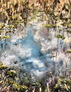 The Power Of Reflection Penny Driscoll