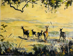 Deer painting Penny Driscoll