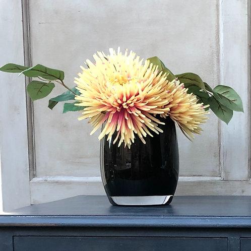 Yellow Chrysanthemums blushed with pink