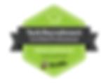 IT Recruitment Agency Tech Recruitment Certified Professional Devskiller
