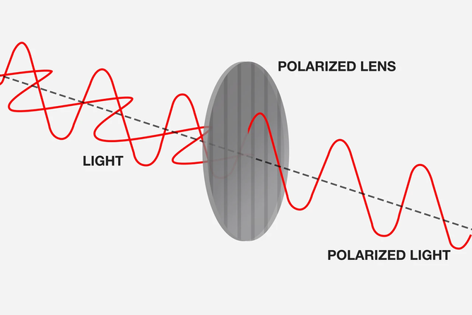 Optical Illusions from Polarisers