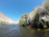 sierratroutdoorsman.com/OwensRiver_Bishop_LowerOwens_guidedfishing_Flyfishing