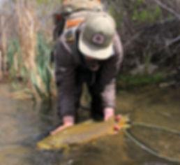 sierratroutdoorsman.com/MammothLakes_EasternSierras_guidedfishing_Flyfishing_eastwalker