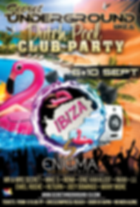 Dutch Pool & Club Party.png