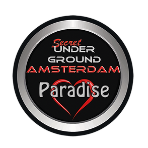 Logo Paradise.png