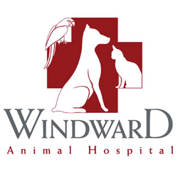 1 Windward logo