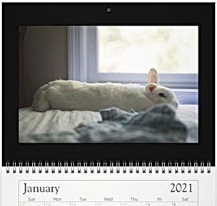 1 January - Cyrus.jpg