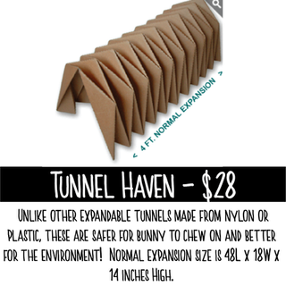 Tunnel Haven