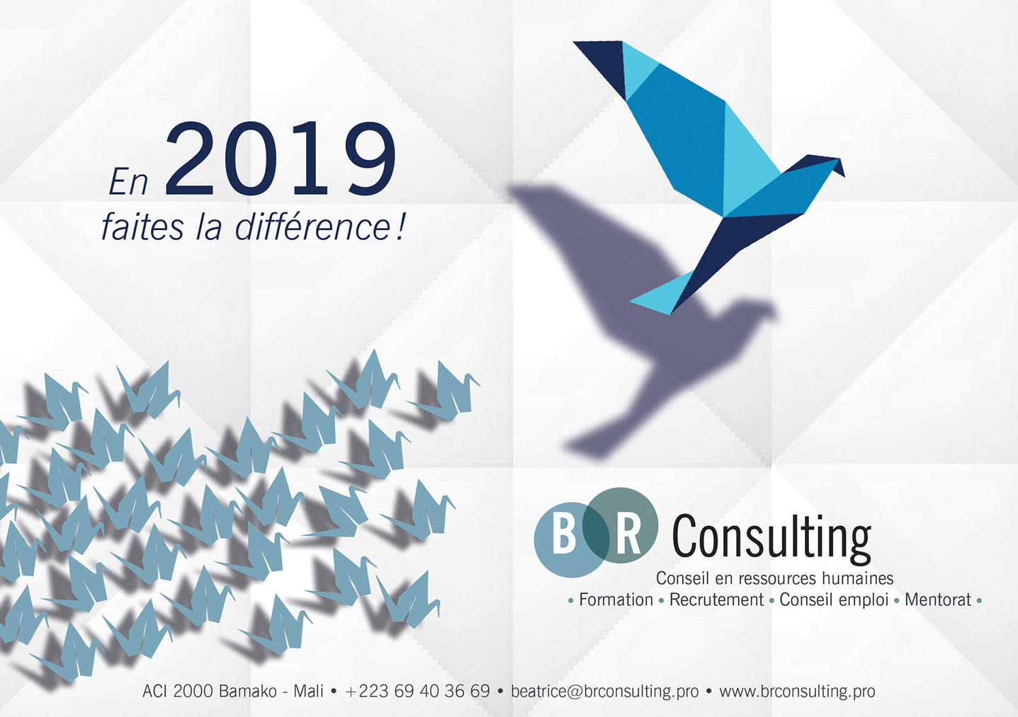 BR Consulting