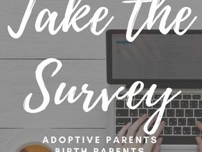 Birth Parents, Adoptive Parents, and Adoptees – I need you!