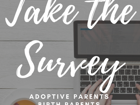 Birth Parents, Adoptive Parents, and Adoptees – I need you!