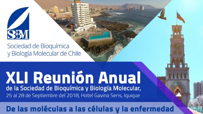 XLI Reunión Anual de la Sociedad de Bioquímica y Biología Molecular