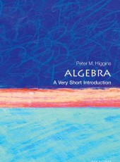 """""""Algebra: A Very Short Introduction"""" NEW BOOK from Professor Peter out now"""