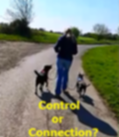 control or connection