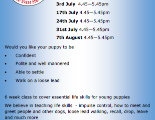 3 new classes for life skills - adult class fully booked