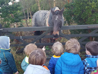 Visiting the 'Neigh'bours!