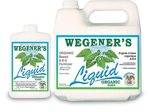 Wegner's Liquid