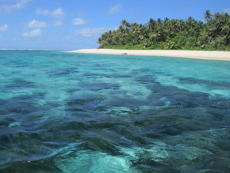Makeup Look & Review: NARS Eye Paint in Solomon Islands