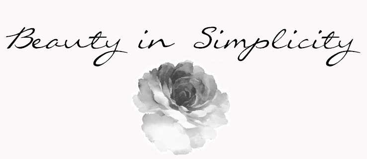 tumblr_static_beauty_in_simplicity_banner