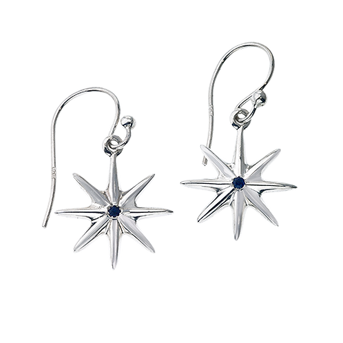 Baby Starz Earrings