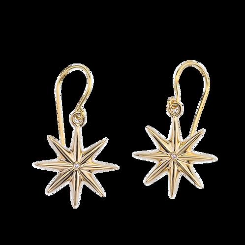 Baby Starz Earrings