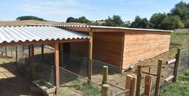 Aménagement du parc des cochons