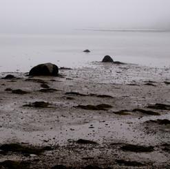 Maine Landcscapes #1